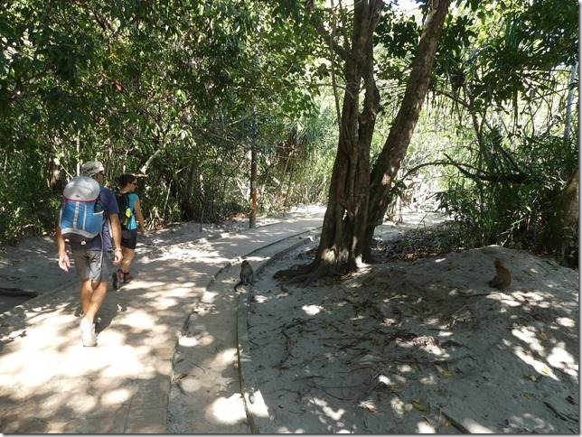 Penang National Park (3)