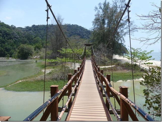 Penang National Park (80)