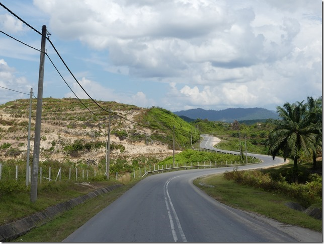 Sur la route après les Cameron Highlands (24)