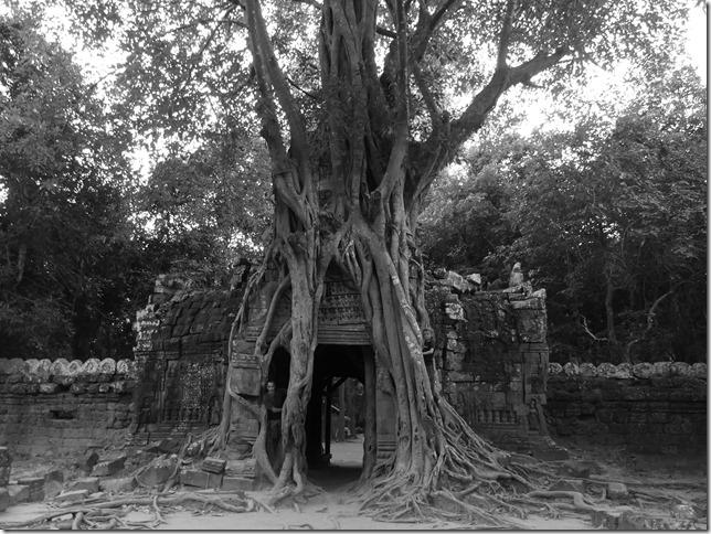 Temples d'Angkor - Prasat Ta Som (10)